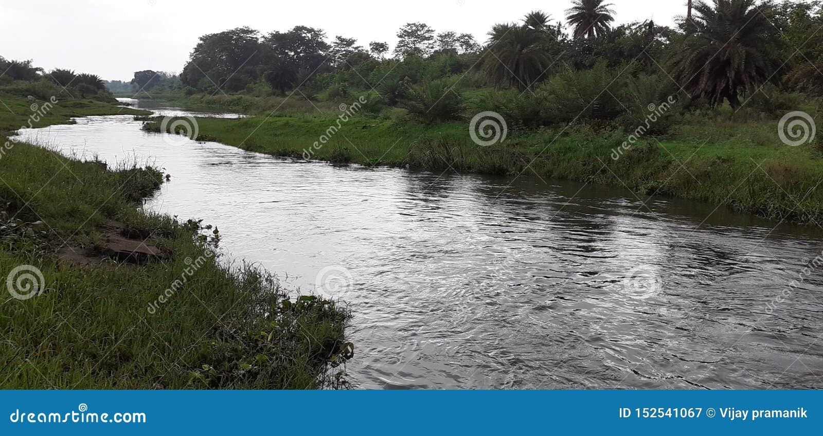 Ινδικοί μικροί ποταμός και δάσος