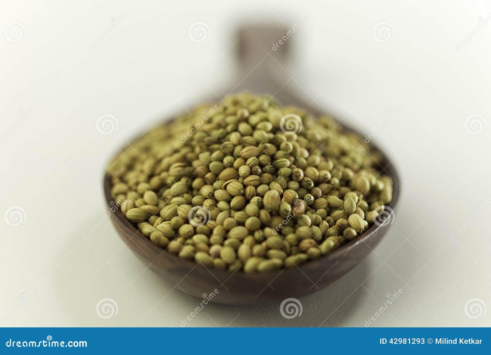 Ινδικοί σπόροι καρύκευμα-κορίανδρου