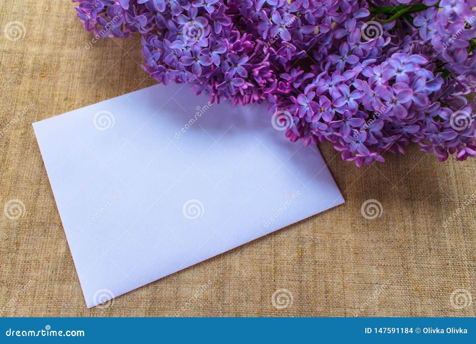 Ιώδη λουλούδια σε ένα ιώδες βάζο και έναν φάκελο με μια θέση για μια επιγραφή Κάρτα