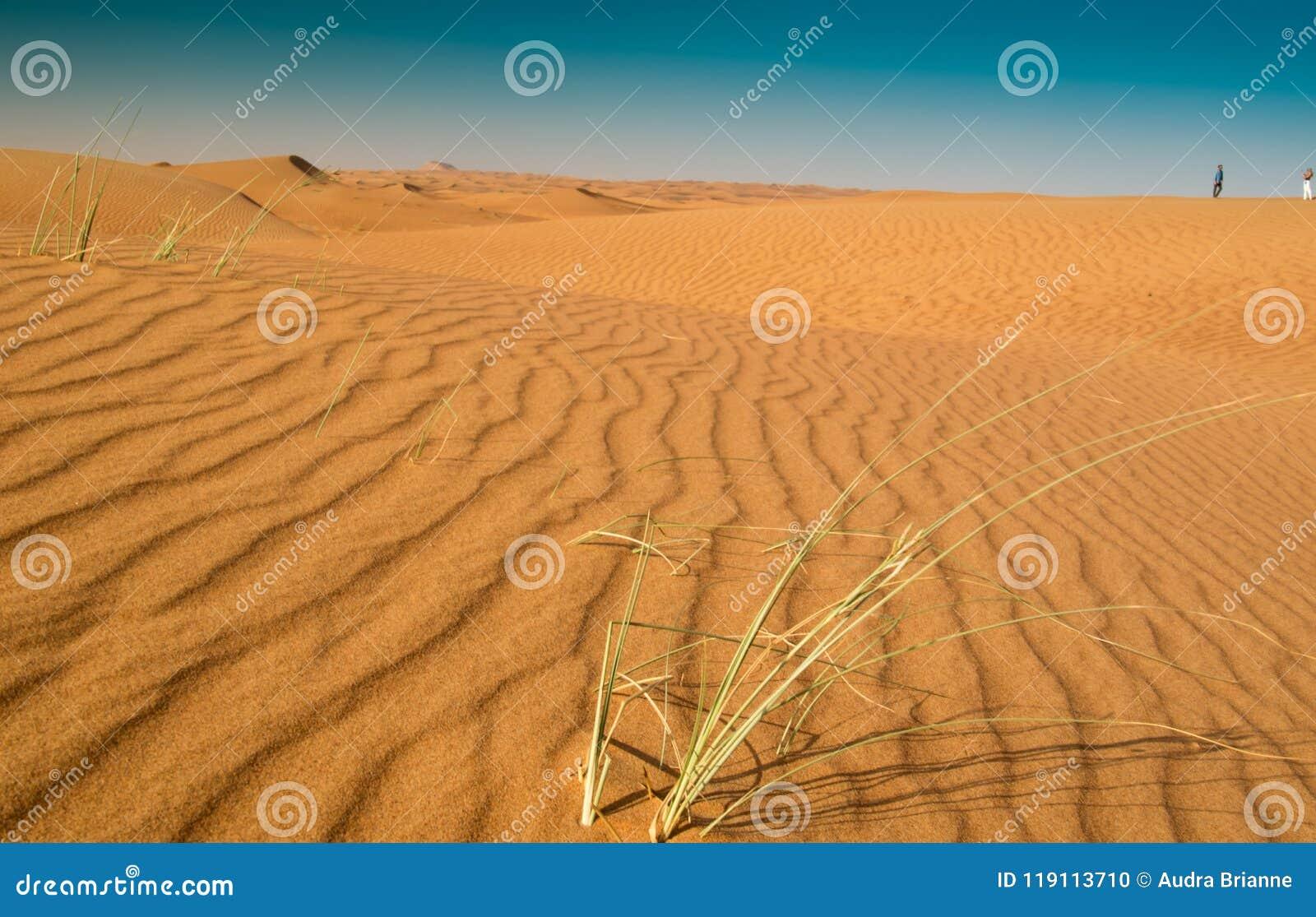 Κάθετα σχέδια άμμου στην έρημο της Σάρτζας