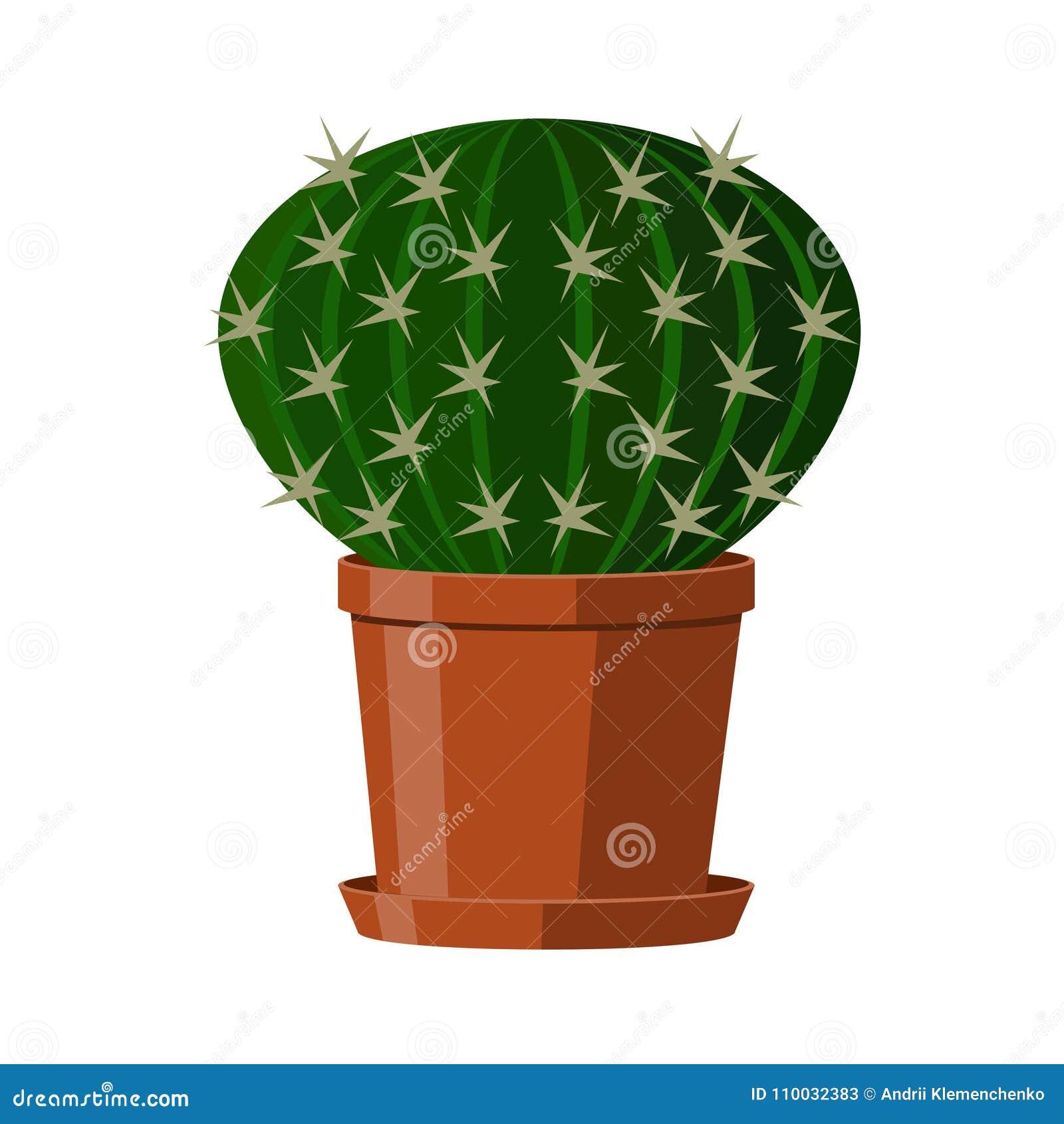 Κάκτος με τις σπονδυλικές στήλες σε ένα δοχείο Άνθισμα houseplant Διανυσματική απεικόνιση που απομονώνεται στην άσπρη ανασκόπηση
