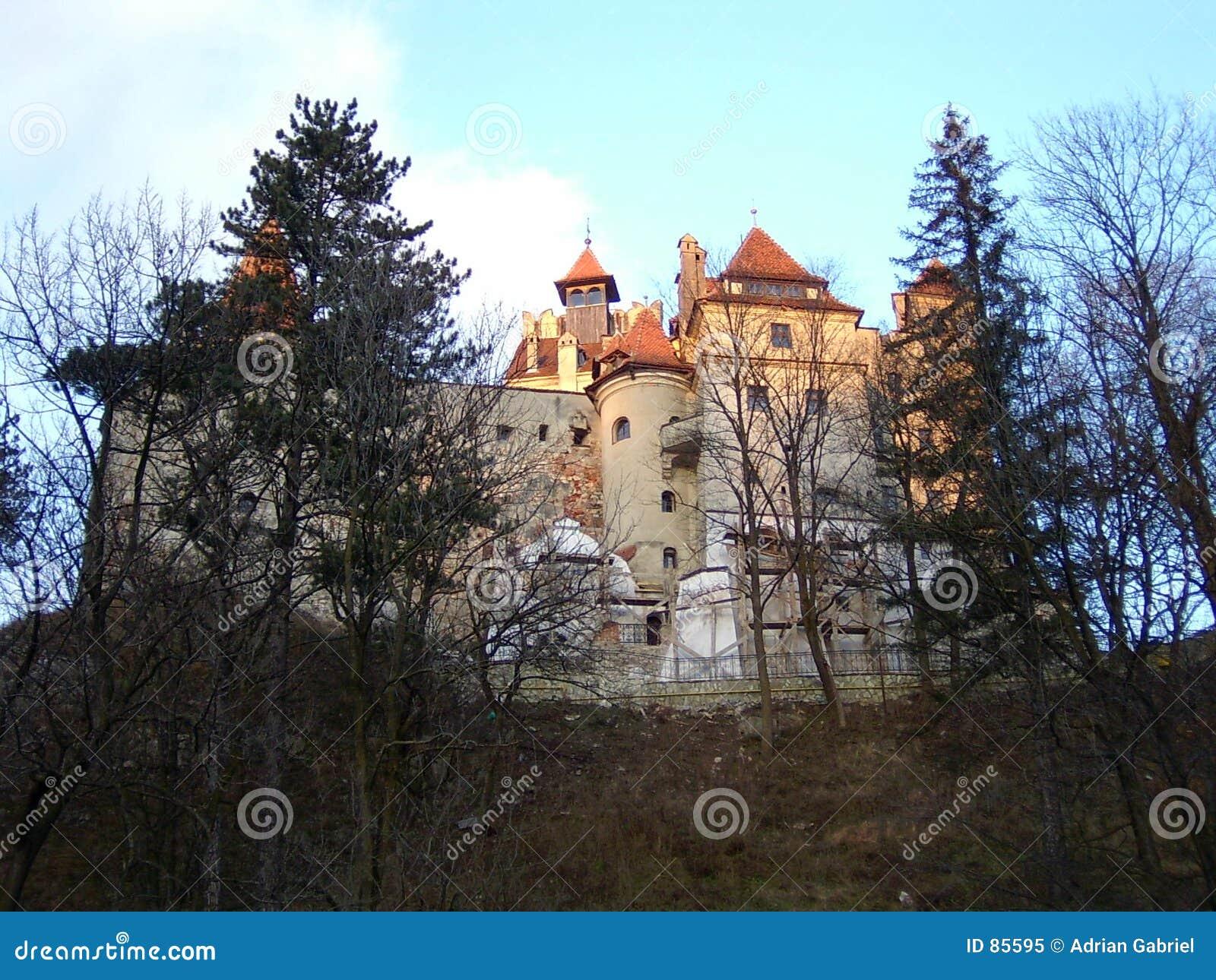 κάστρο πίτουρου