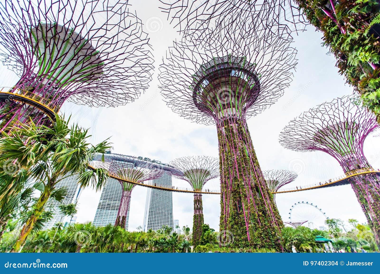 Κήποι από τον κόλπο - κήπος της Σιγκαπούρης ` s Wonder