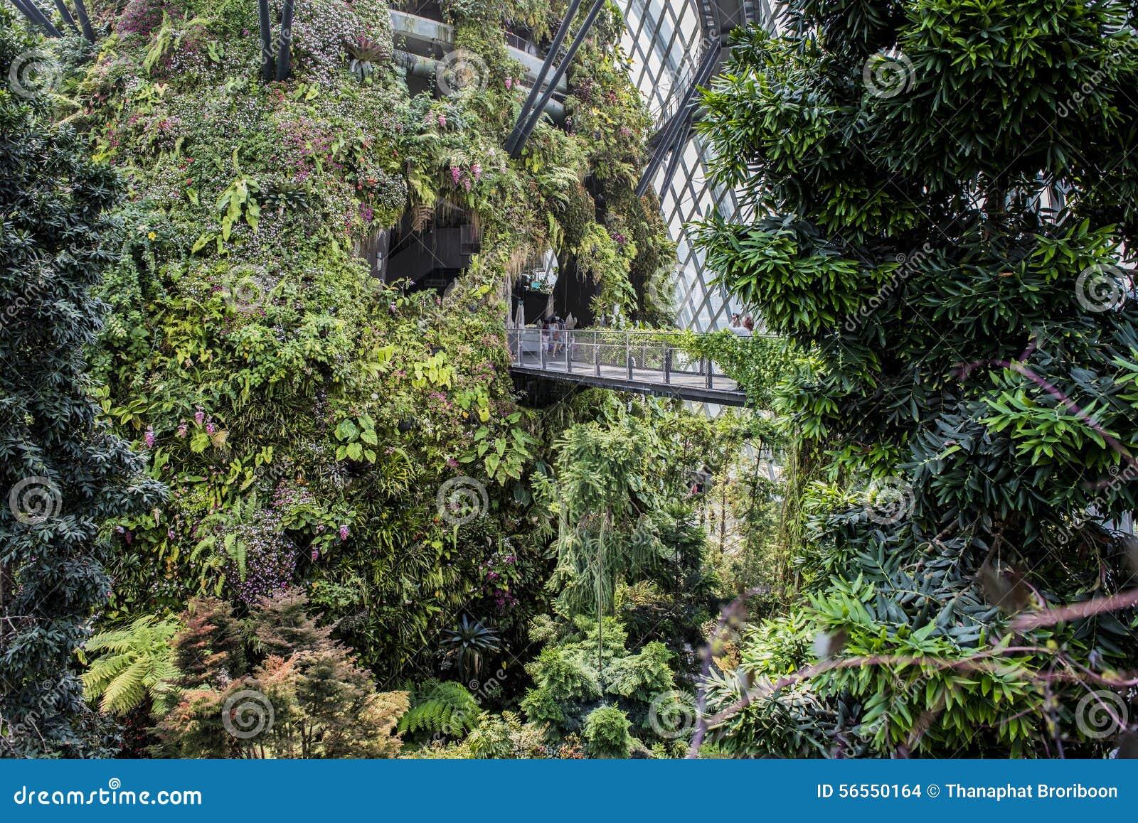 Download κήποι Σινγκαπούρη κόλπων εκδοτική στοκ εικόνα. εικόνα από ουρανός - 56550164