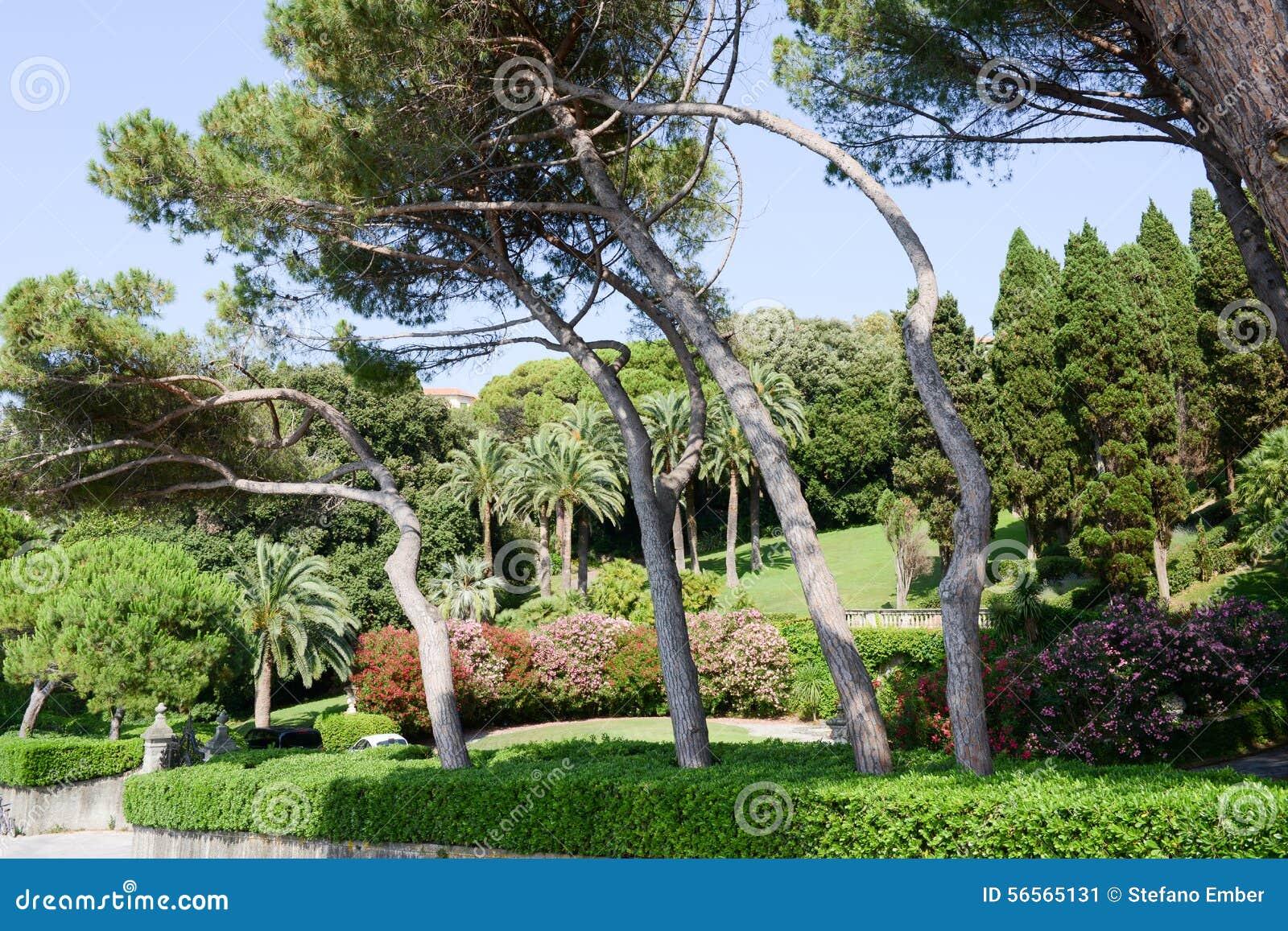 Download Κήπος μιας βίλας σε Levano στη Λιγυρία Στοκ Εικόνα - εικόνα από ιταλία, φυσικός: 56565131