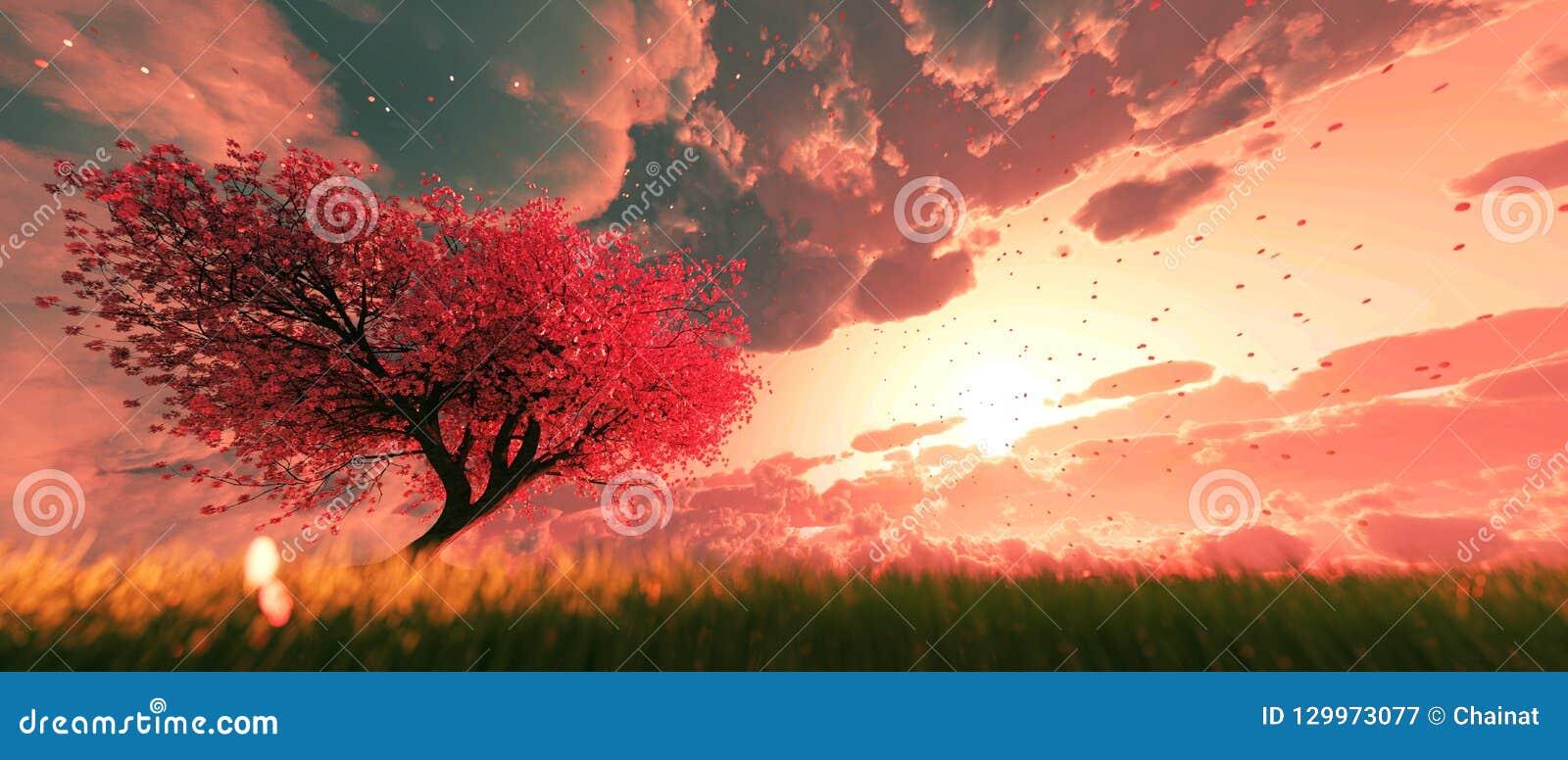Κήπος του ουρανού