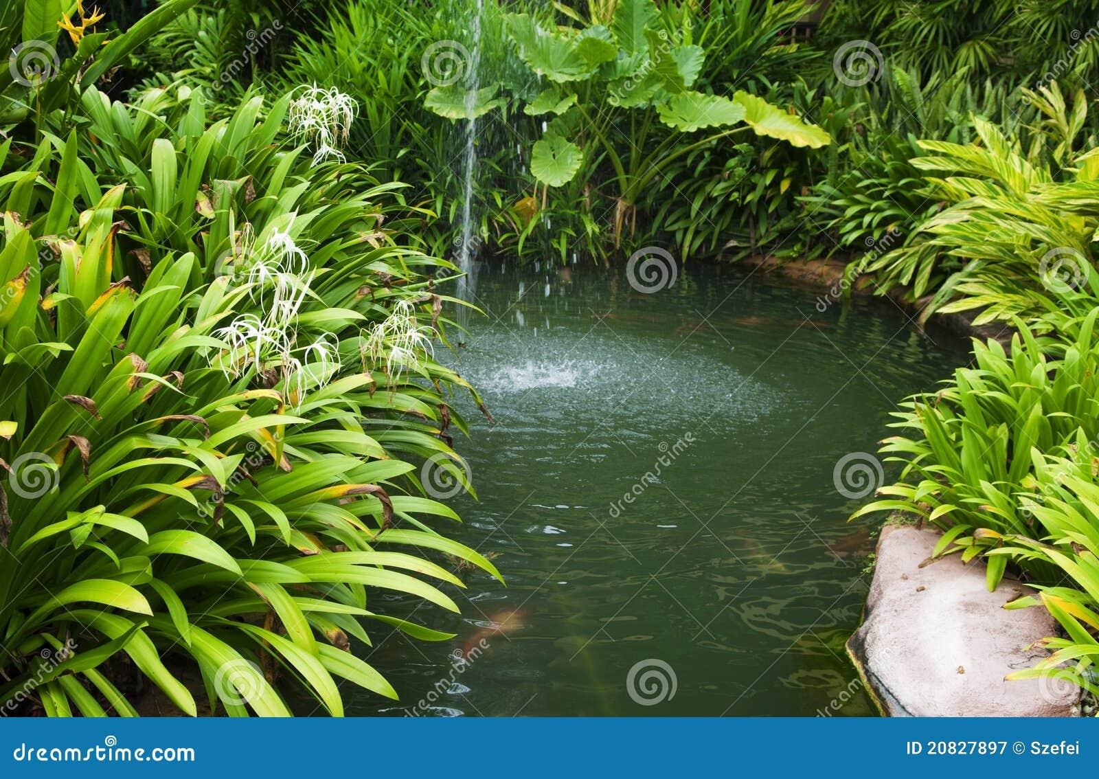 κήπος τροπικός