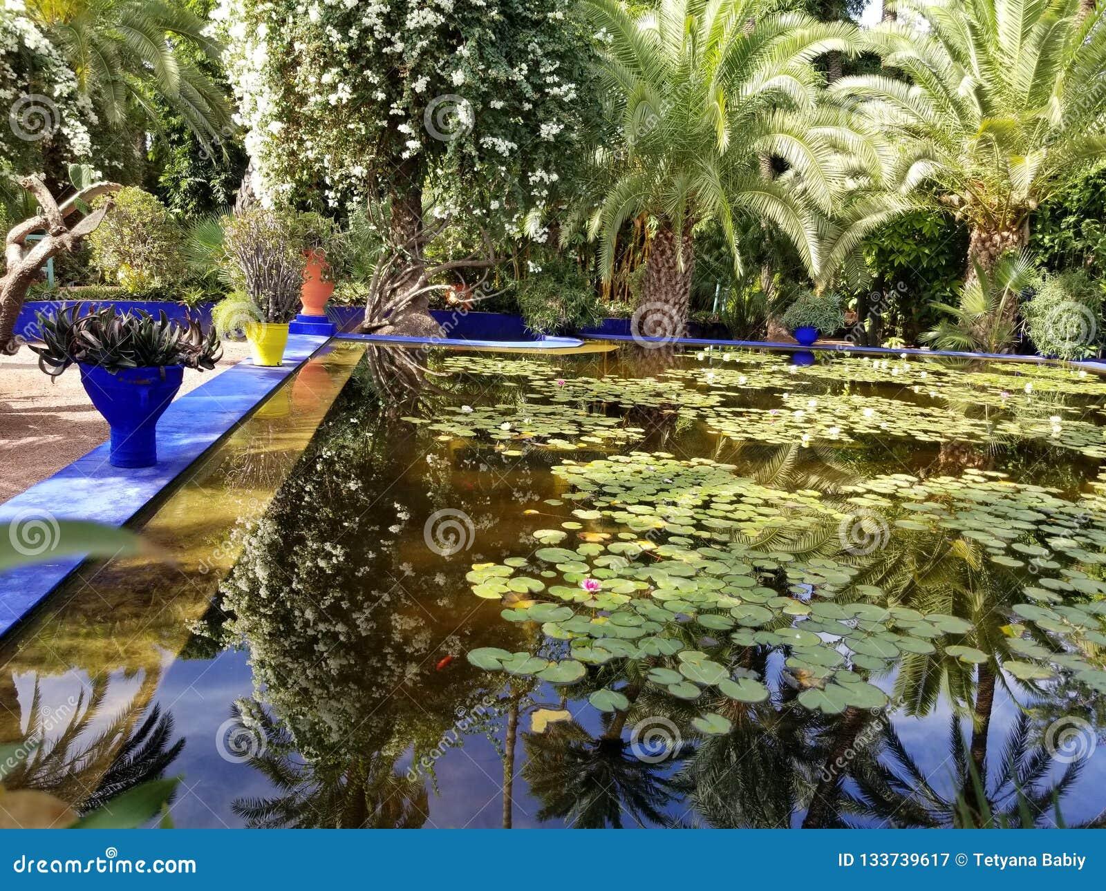 Κήπος StLaurent Yves