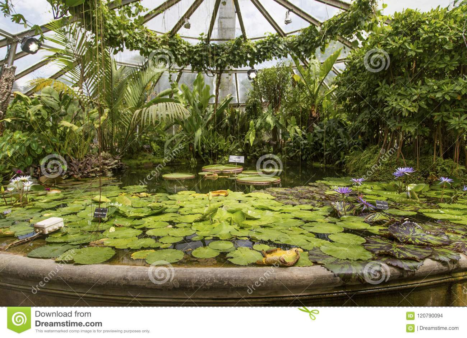 Κήπος tete δ ή Parc de Λα Tete δ ` ή στη Λυών, Γαλλία κήπος που ονομάζεται από το χρυσό κεφάλι για το tresor Πάρκο του χρυσού κεφ