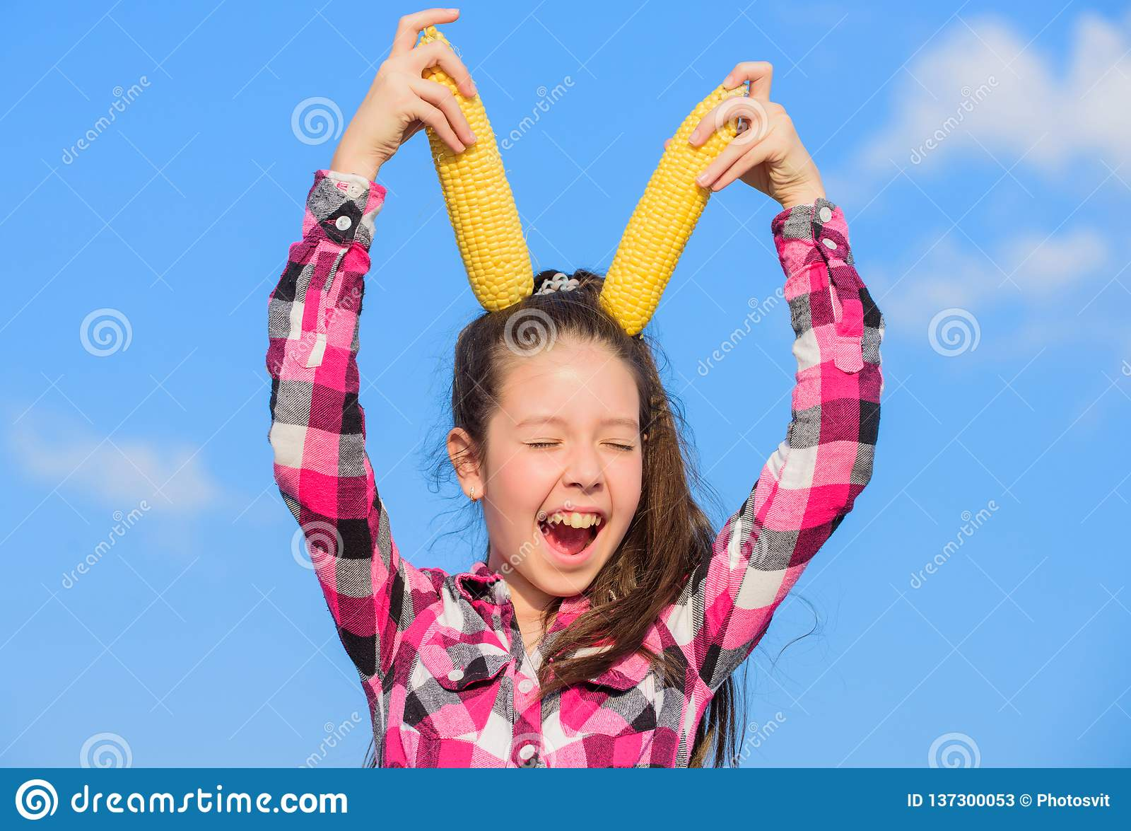 Κίτρινος σπάδικας καλαμποκιού λαβής κοριτσιών παιδιών στο υπόβαθρο ουρανού Ώριμα δημητριακά λαβής κοριτσιών εύθυμα Χορτοφάγος και