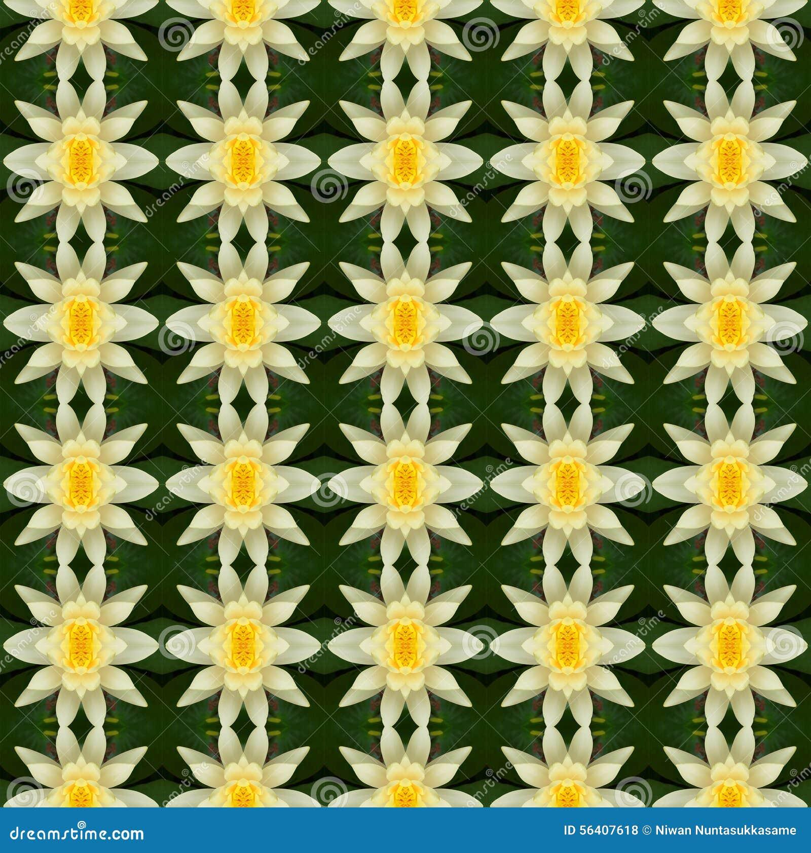 Κίτρινο λουλούδι λωτού στην πλήρη άνθιση άνευ ραφής