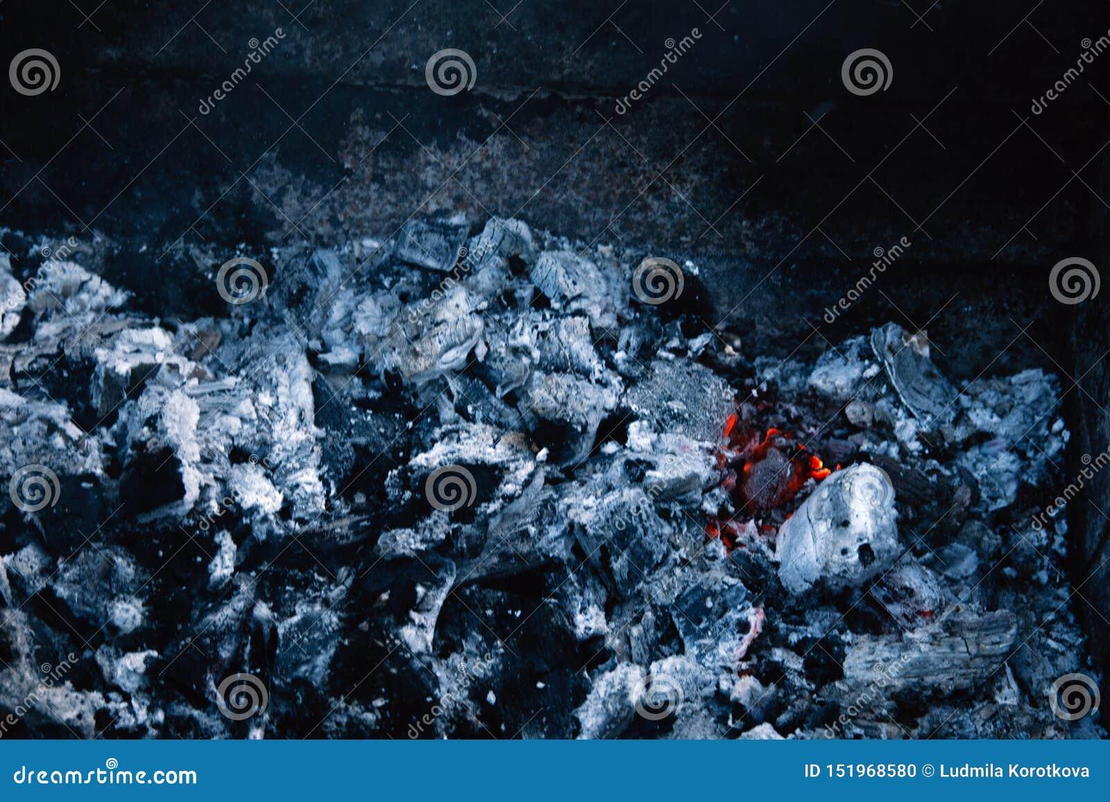 Καίγοντας άνθρακας, μαλακή εστίαση Συστάσεις, υπόβαθρο, περίληψη Χοβόλεις