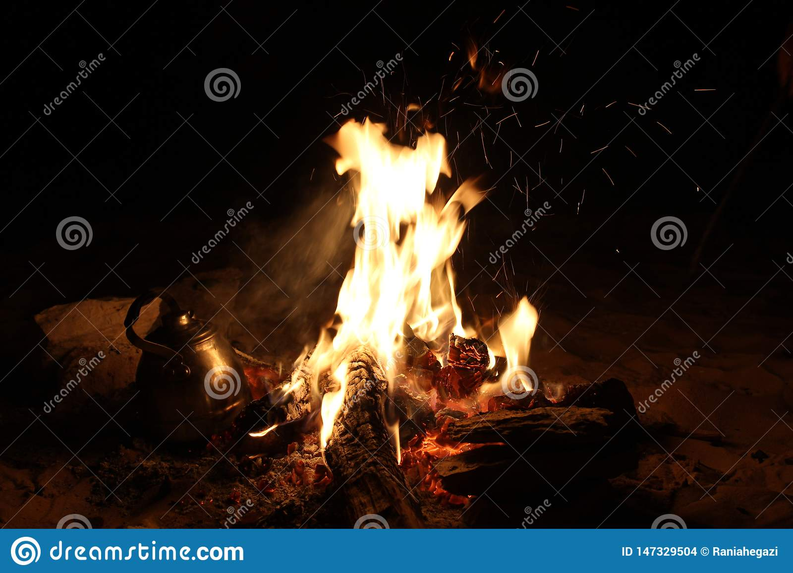 Καίγοντας πυρκαγιά στο ταξίδι σαφάρι