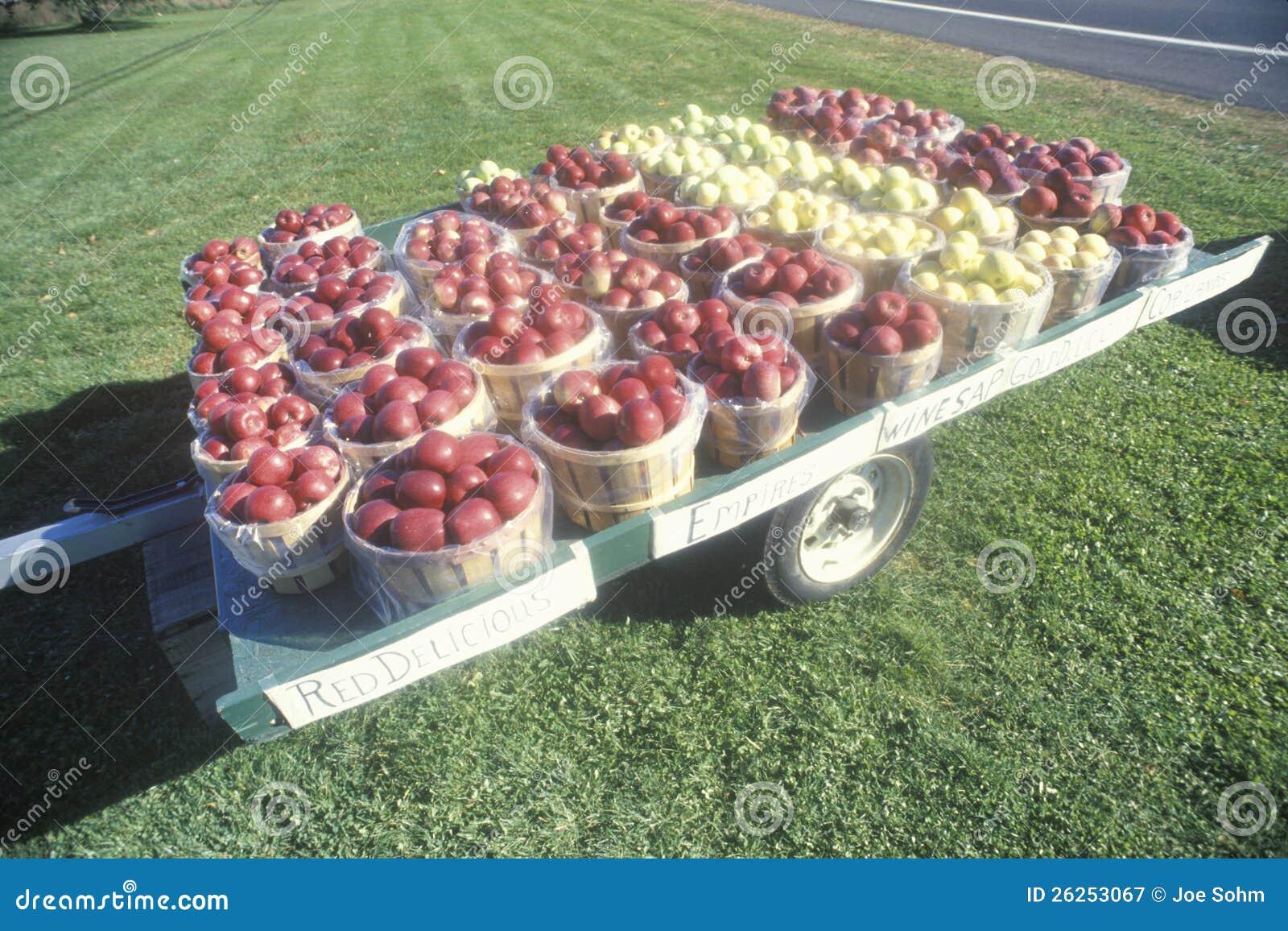 Καλάθια μήλων που κάθονται σε ένα ρυμουλκό