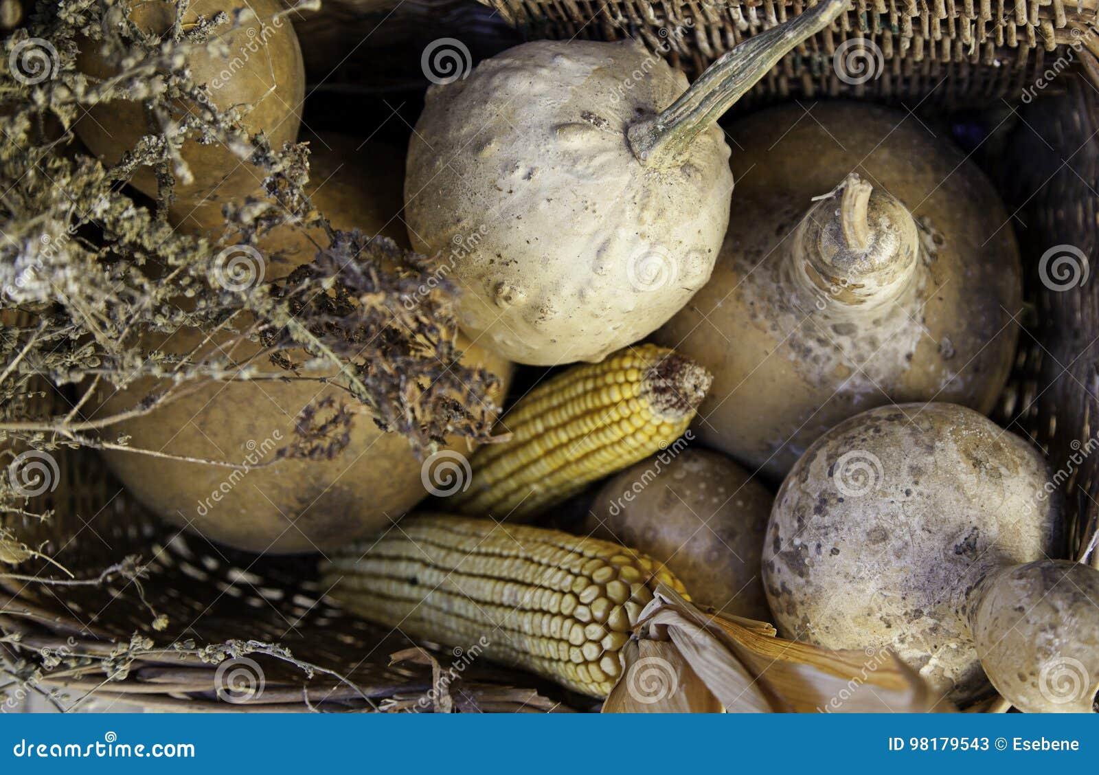 Καλαμπόκι και κολοκύθες σε ένα παραδοσιακό καλάθι