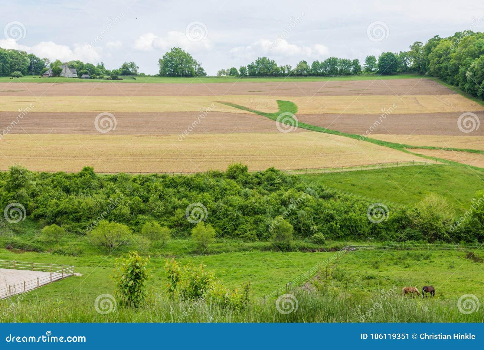 Καλλιεργήσιμο έδαφος που περιβάλλει το πάρκο του William Kain στη κομητεία της Υόρκης, Pennsylva