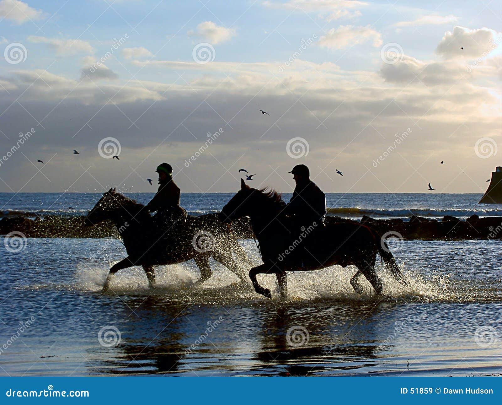 καλπάζοντας άλογα