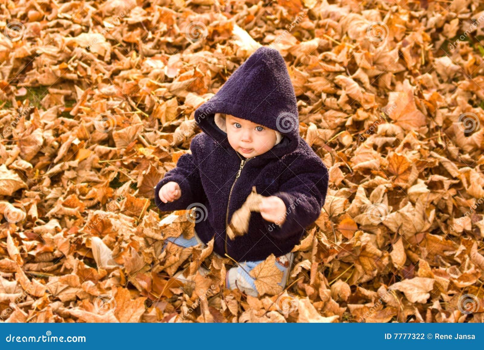 καλυμμένα μωρό φύλλα φθινο