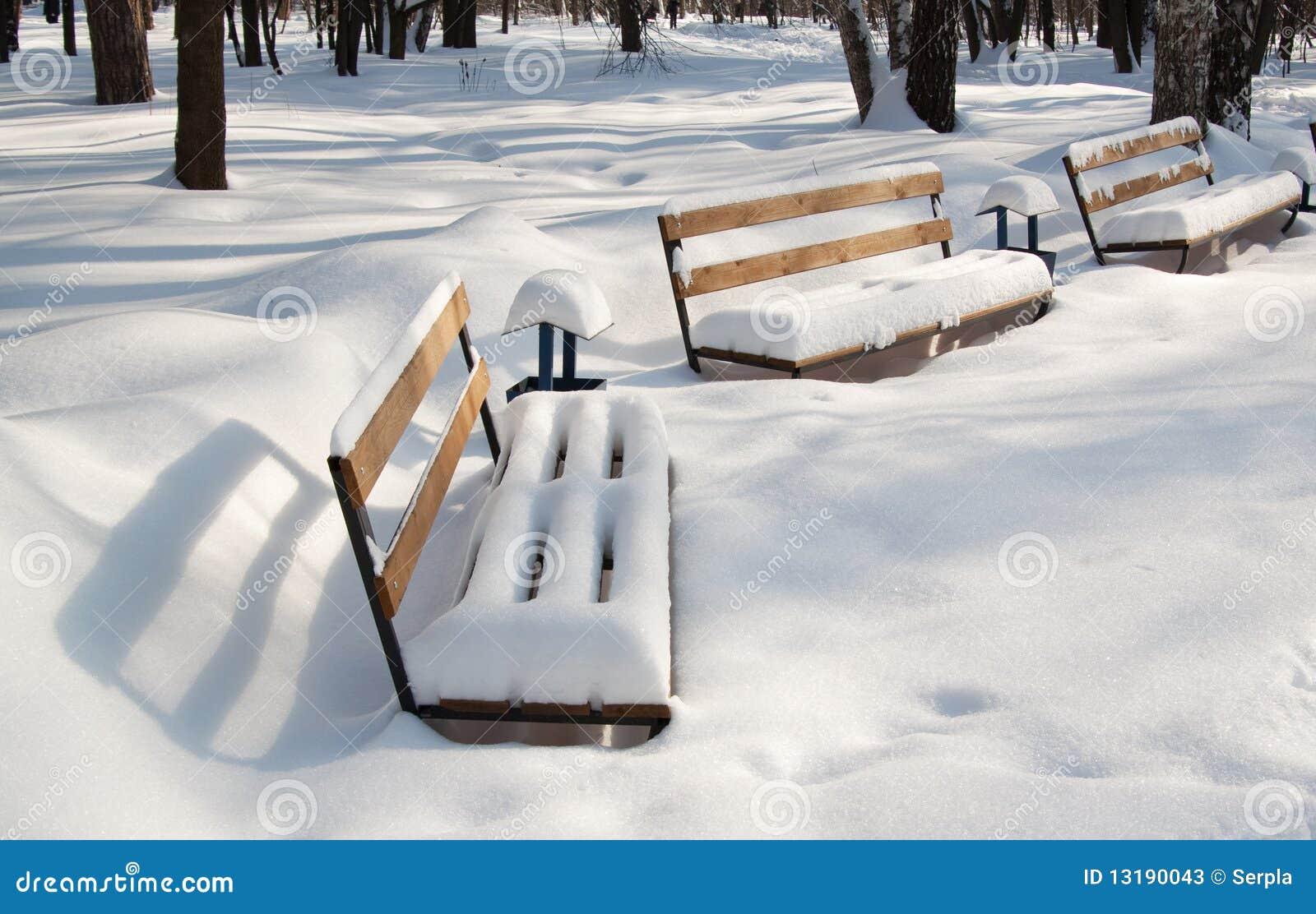 καλυμμένο πάγκοι χιόνι