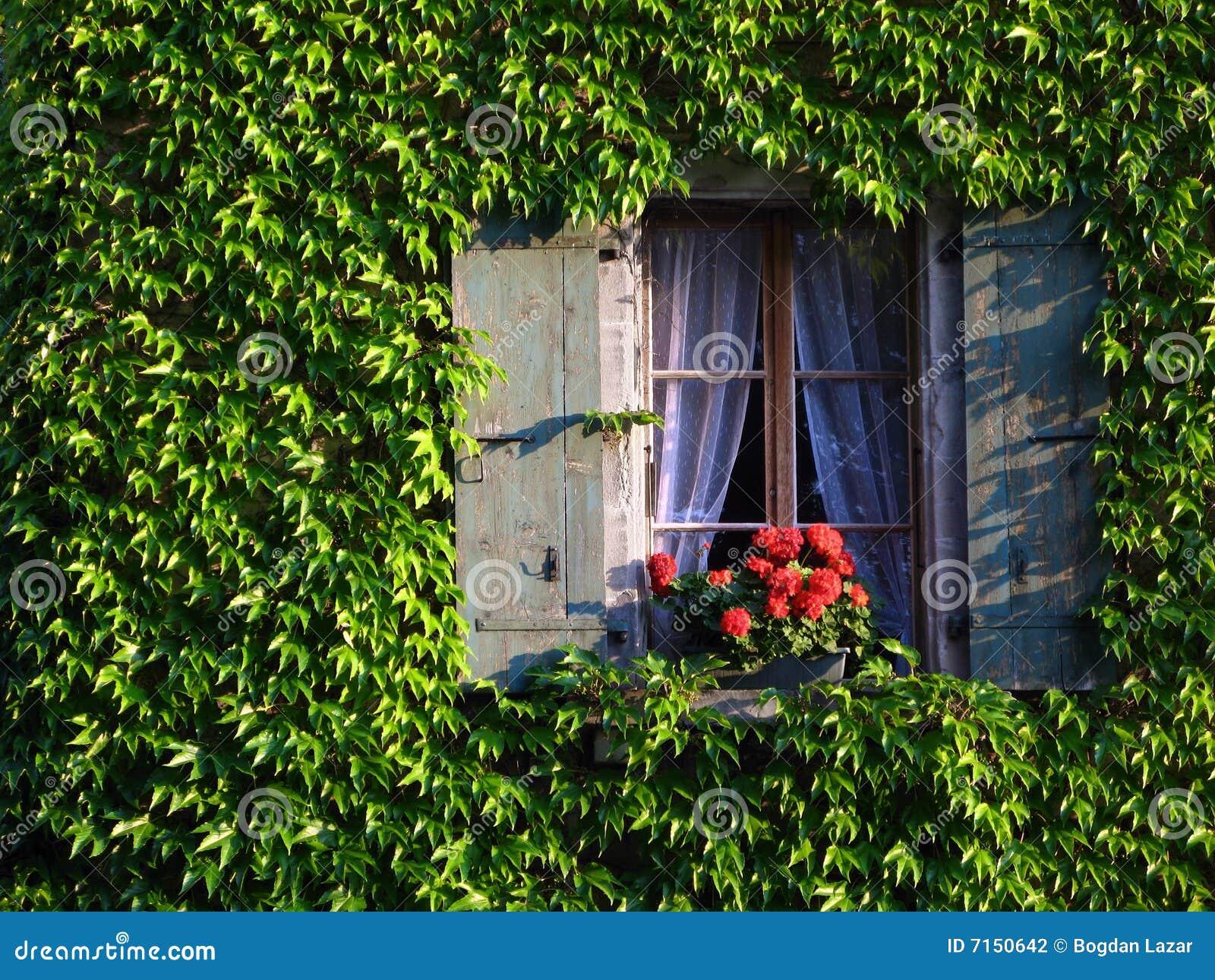 καλυμμένο παράθυρο τοίχω&