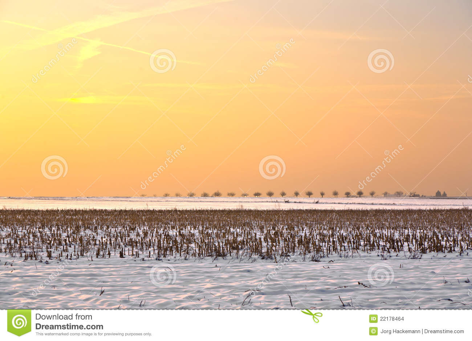 καλυμμένο χιόνι τοπίων πεδί&