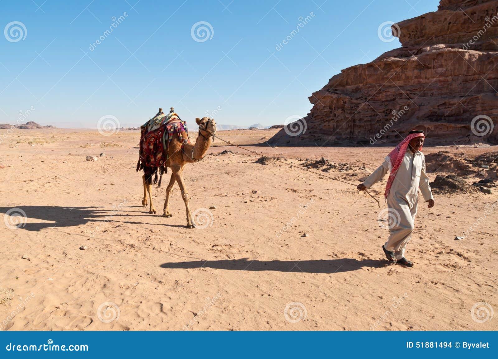 Καμήλα στην έρημο