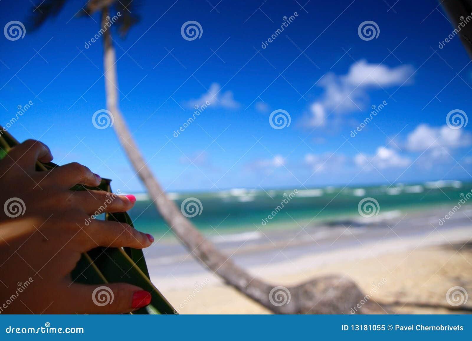 καραϊβική όψη ματιών παραλιών