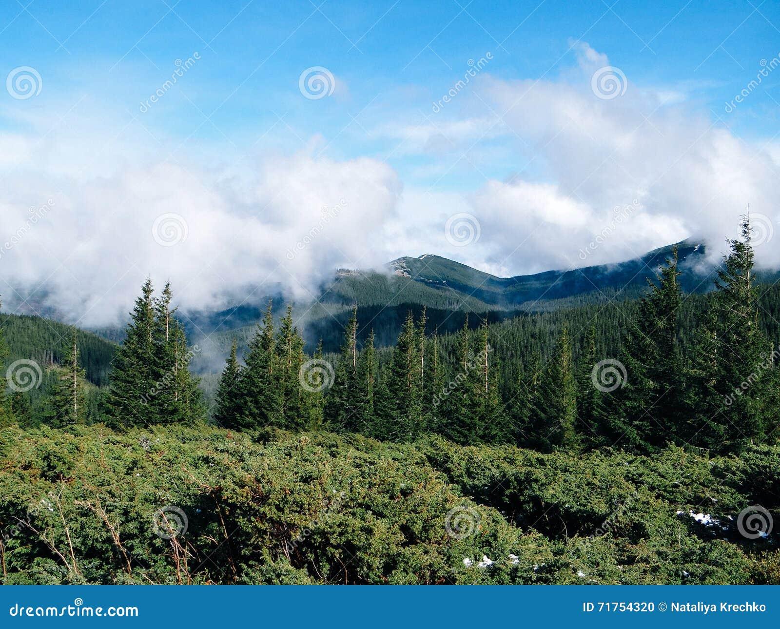 Καρπάθιο τοπίο - βουνό Goverla
