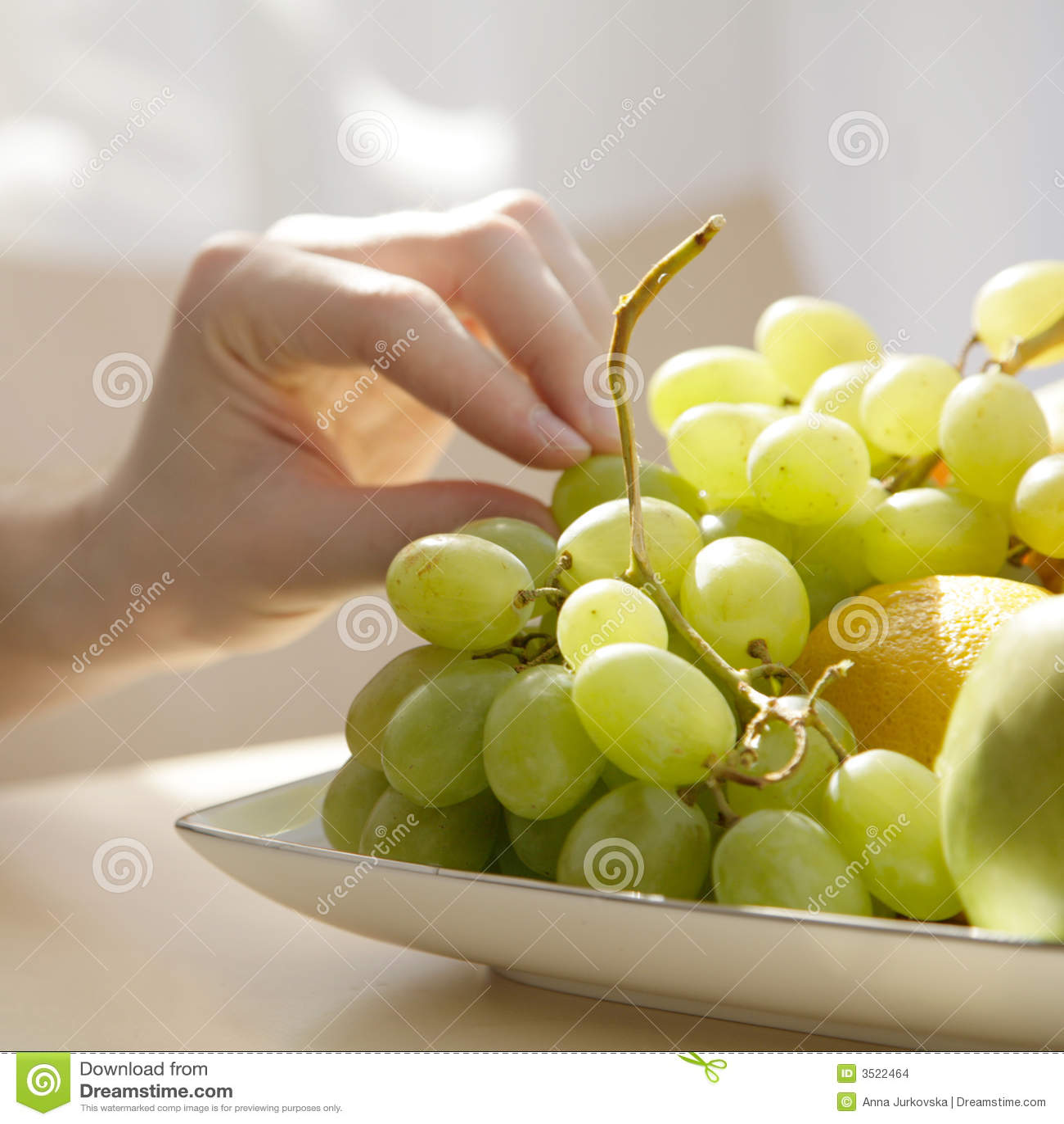 καρπός σιτηρεσίου