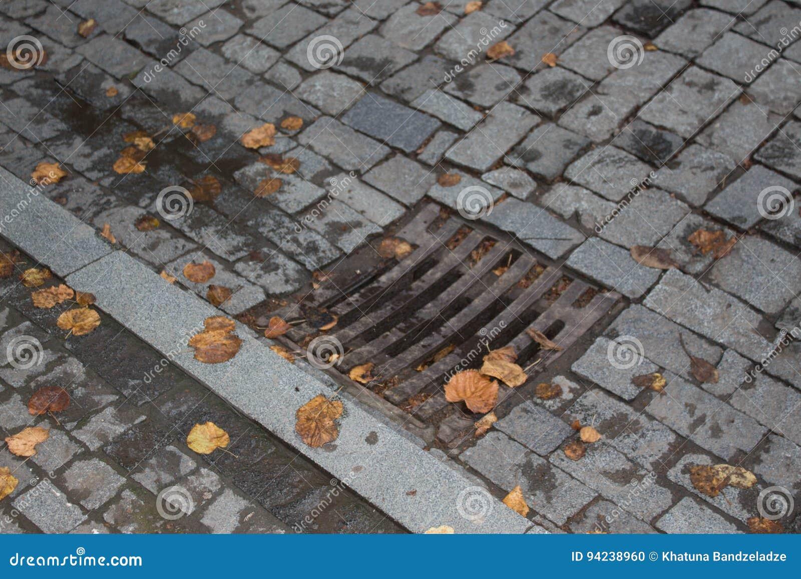 Καταπακτή υπονόμων αποξηράνσεων στο φθινοπωρινό πάρκο που καλύπτεται με τα κίτρινα φύλλα Κάλυψη αποξηράνσεων από την οδική πλευρά