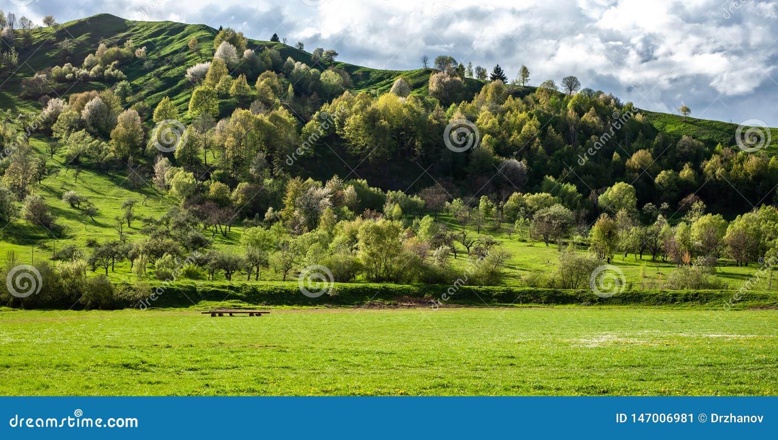 Καταπληκτικό πανοραμικό τοπίο με την πράσινους χλόη, τους λόφους και τα δέντρα, νεφελώδης ουρανός