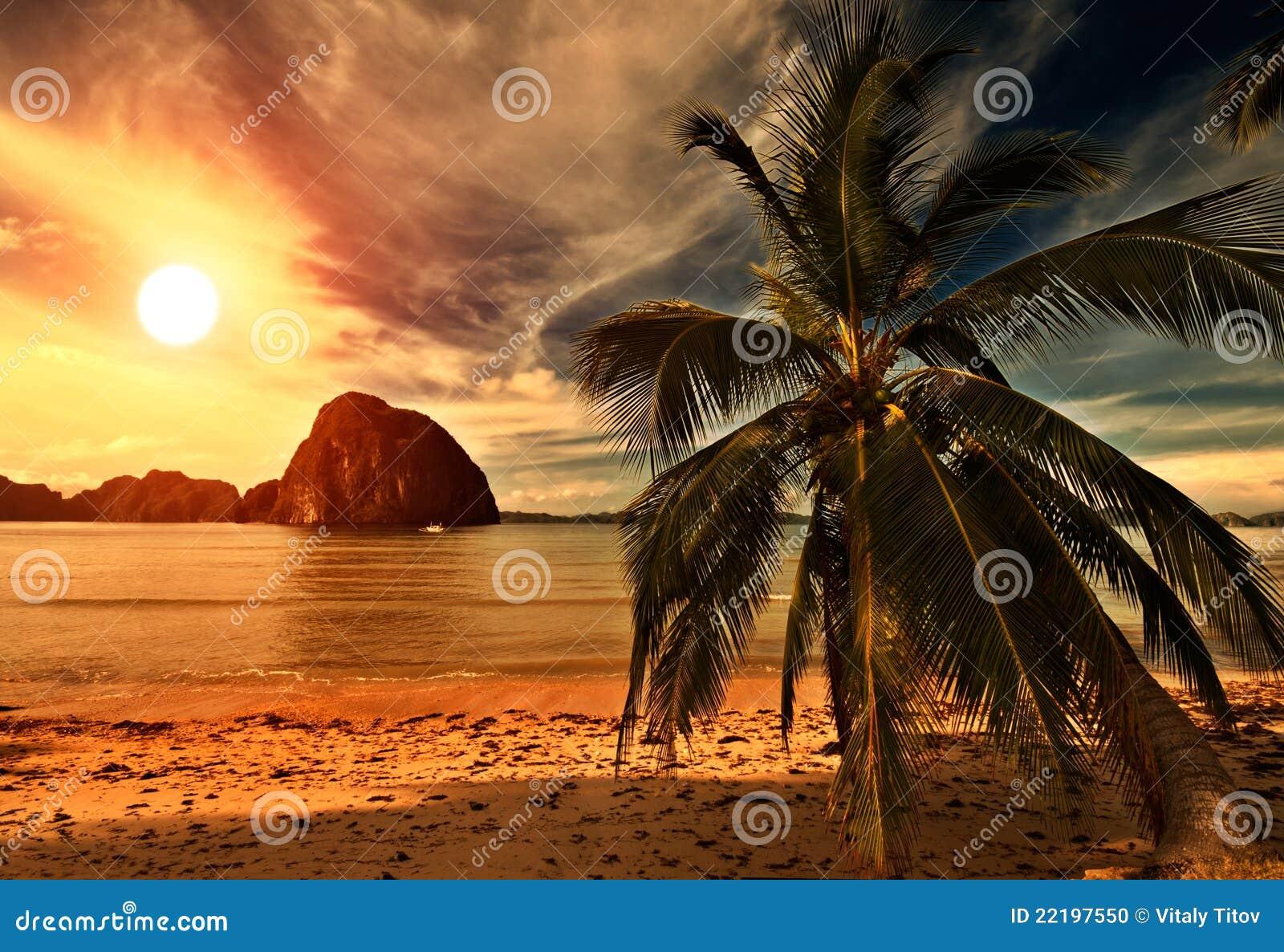 καυτό ηλιοβασίλεμα tripical