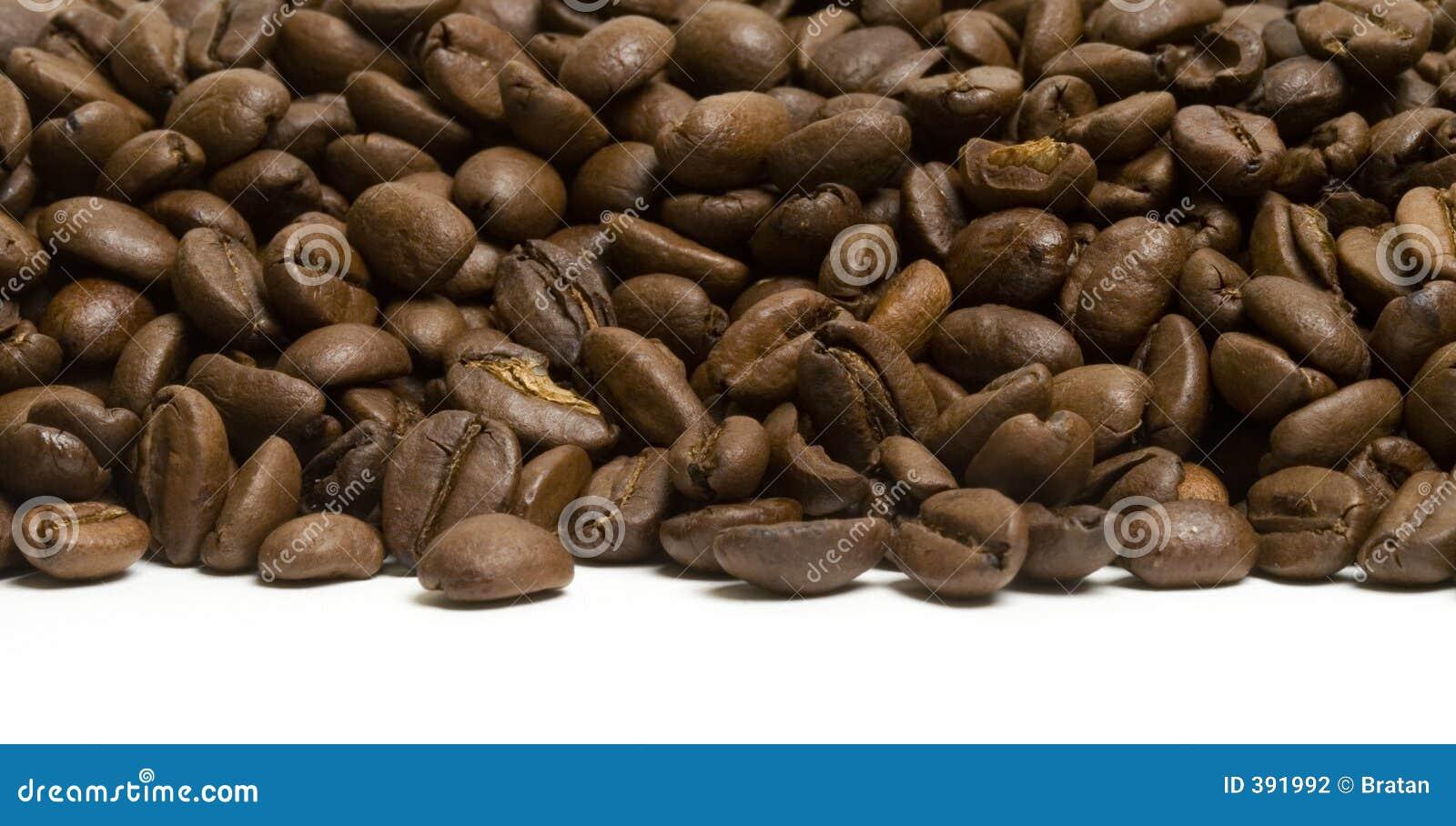 καφές ακτών