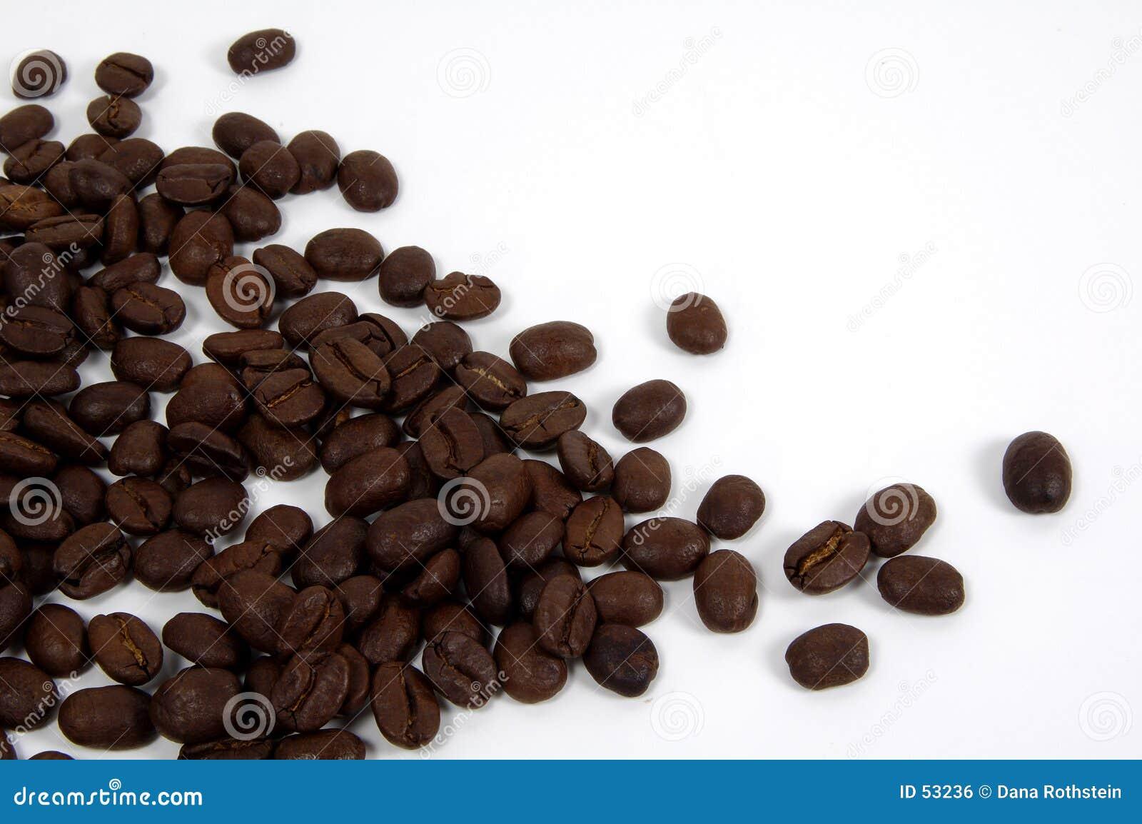 Download καφές 3 στοκ εικόνες. εικόνα από ποτό, αδελφών, ιάβα, σύσταση - 53236