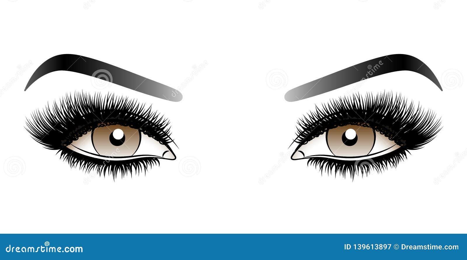 Καφετιά μάτια γυναικών με τα μακροχρόνια ψεύτικα μαστίγια με τα φρύδια