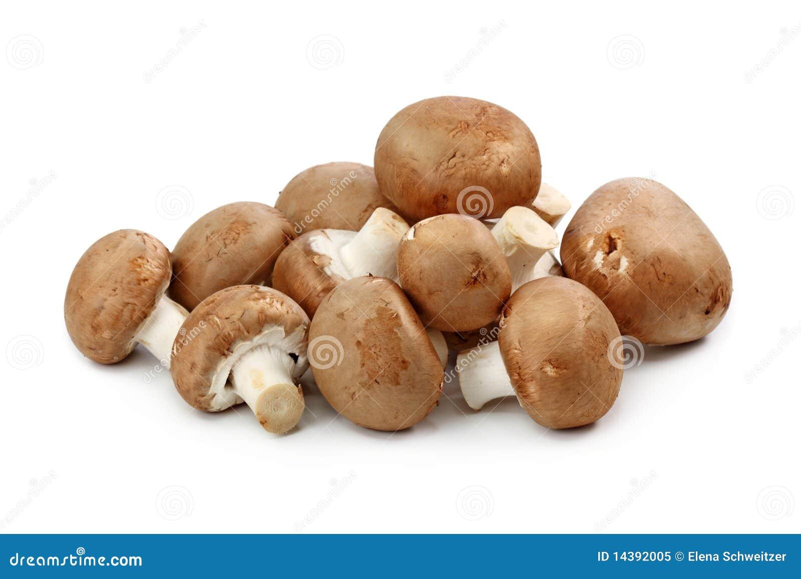 καφετιά champignons