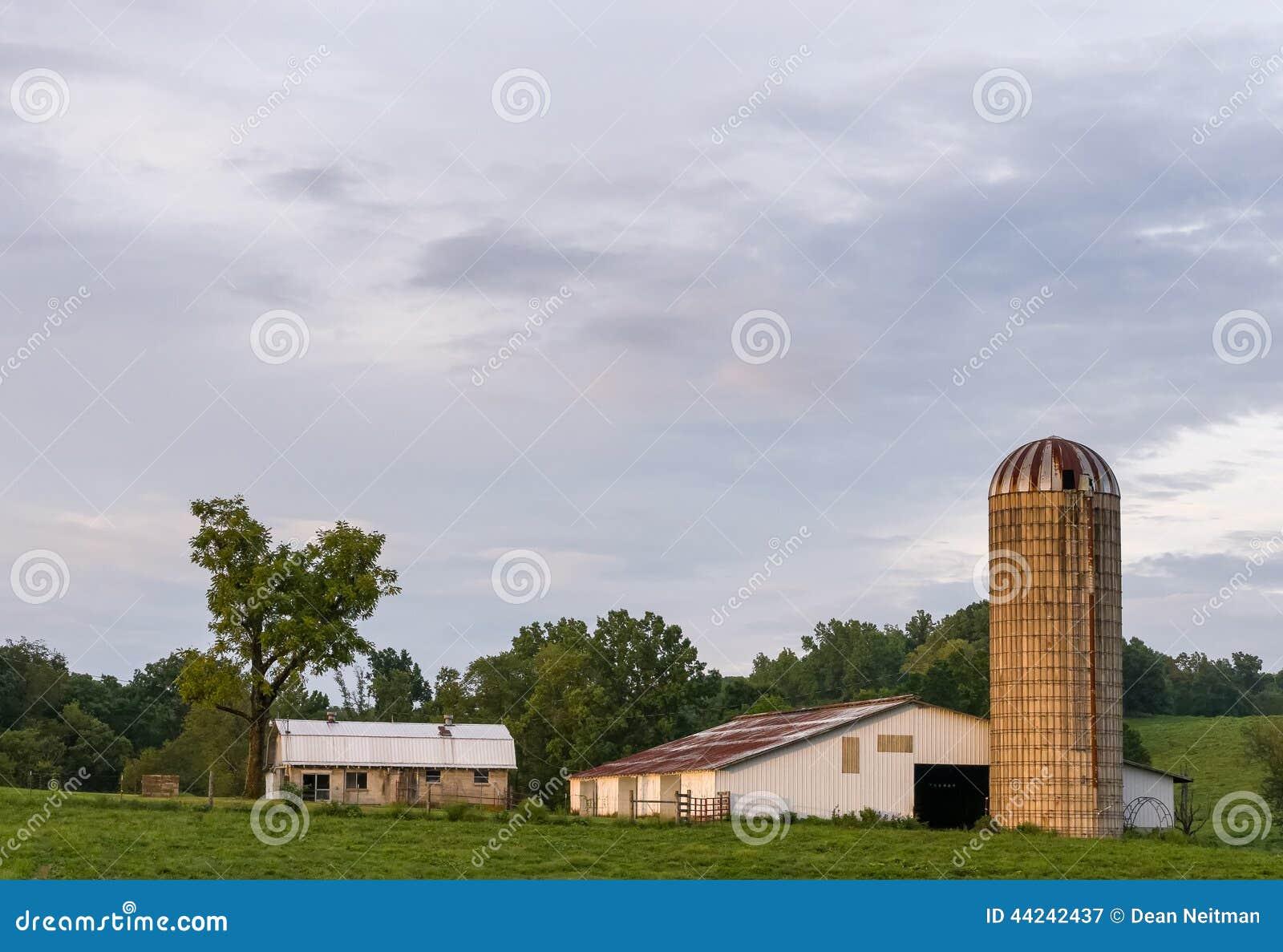 Καλλιεργήσιμο έδαφος βραδιού