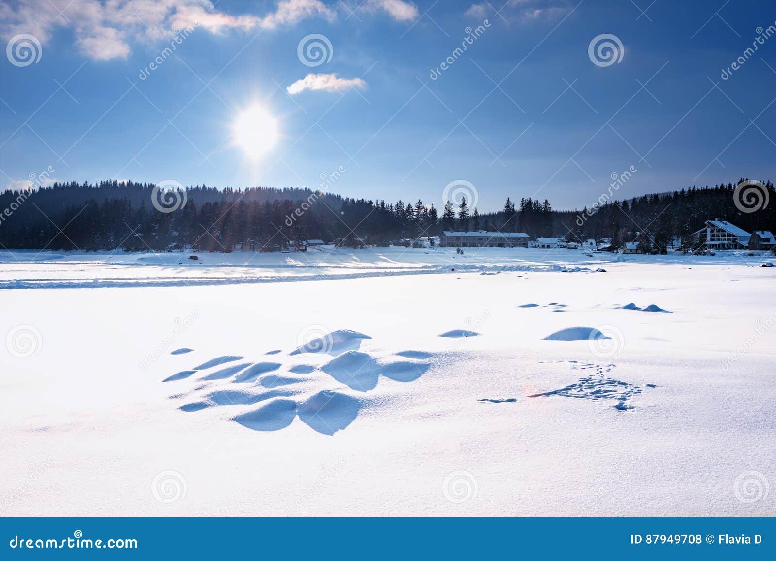 καλυμμένα όρη σπιτιών ελβετικά χειμερινά δάση χιονιού σκηνής μικρά Φράγμα Polyana Shiroka σε μια ηλιόλουστη χειμερινή ημέρα Χιονώ