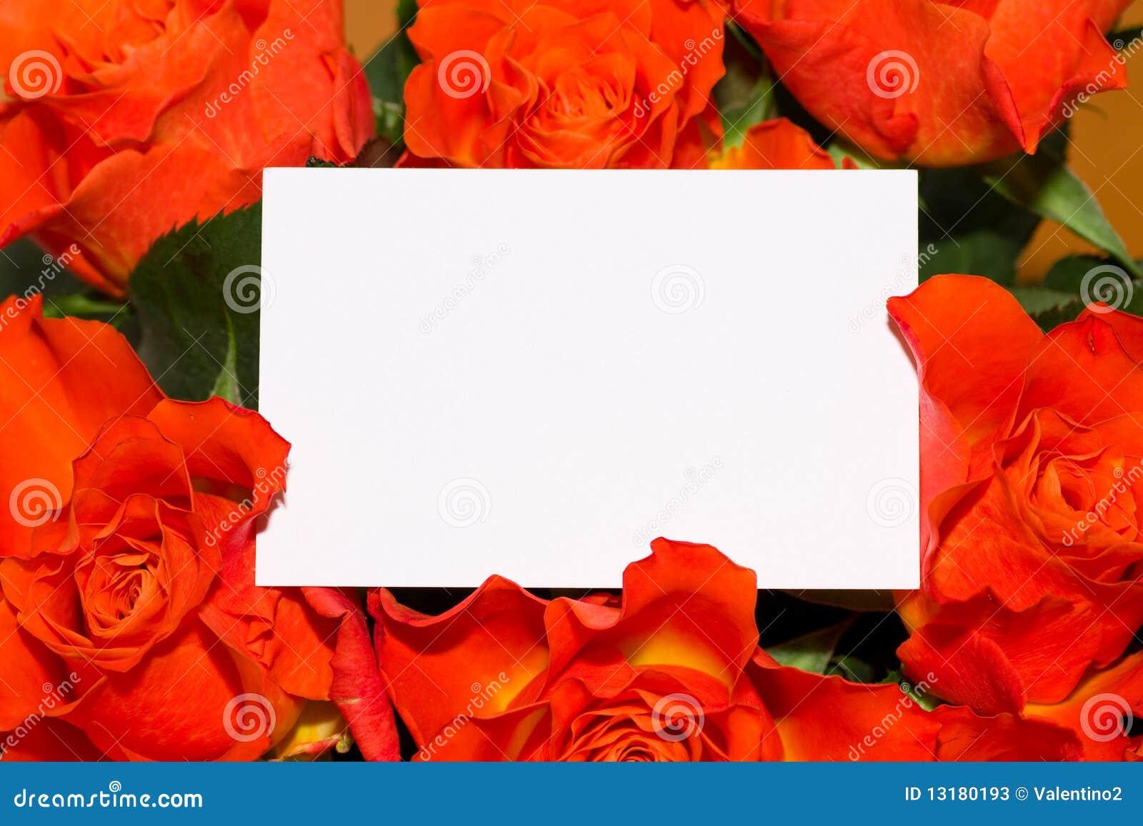 κενά τριαντάφυλλα καρτών