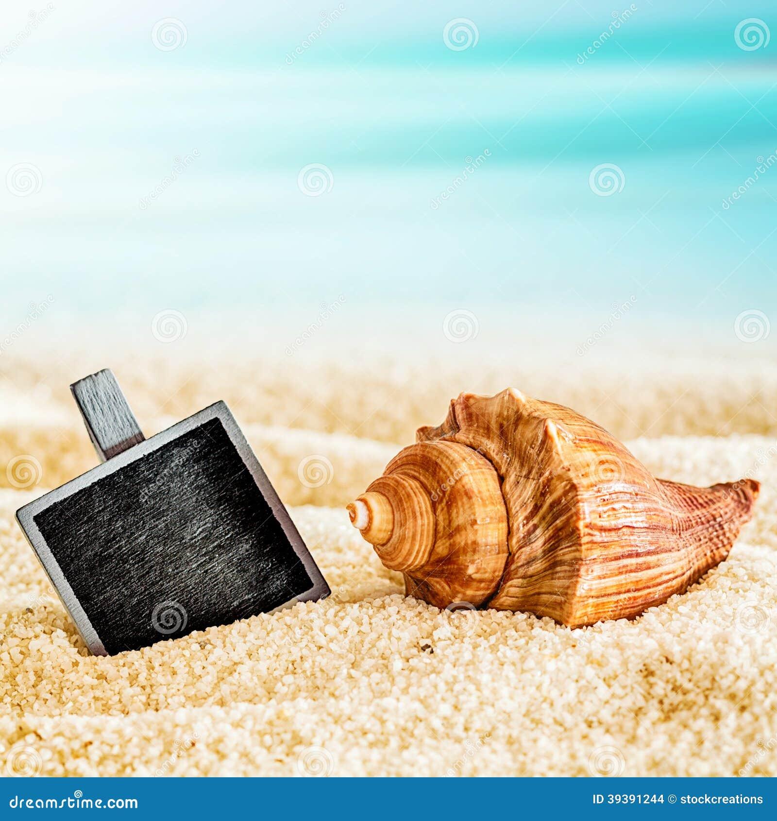 Κενή πλάκα με ένα θαλασσινό κοχύλι σε μια ηλιόλουστη παραλία