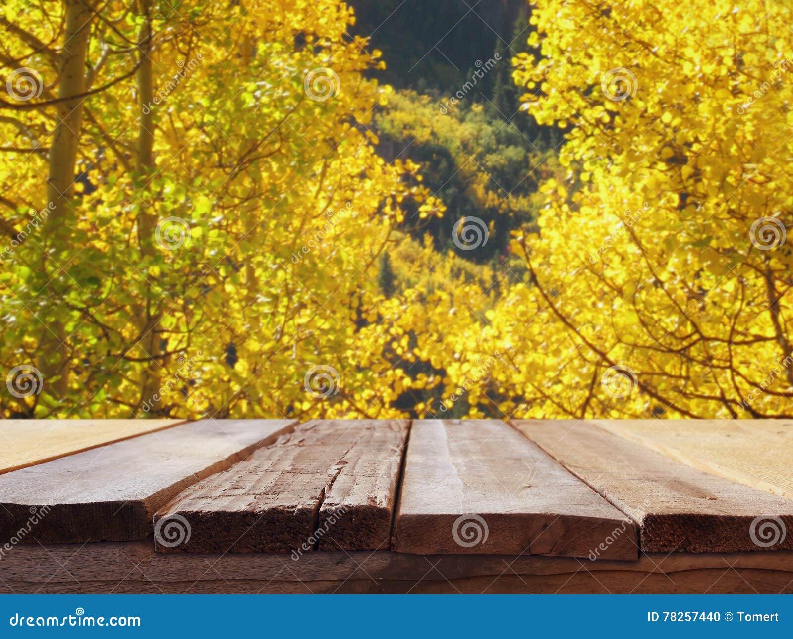 Κενός ξύλινος πίνακας μπροστά από το φθινοπωρινό τοπίο