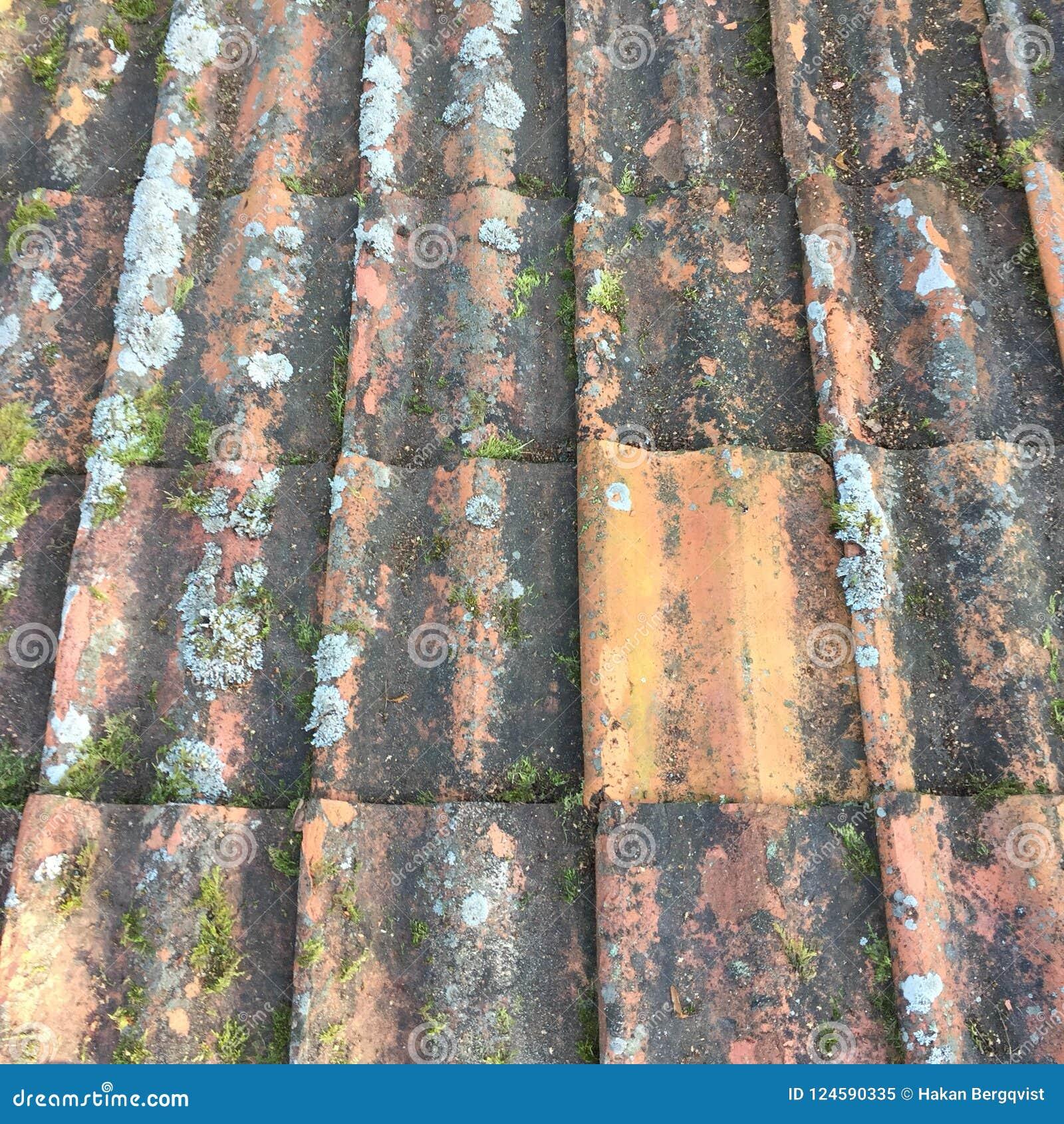 Κεραμίδια στη στέγη