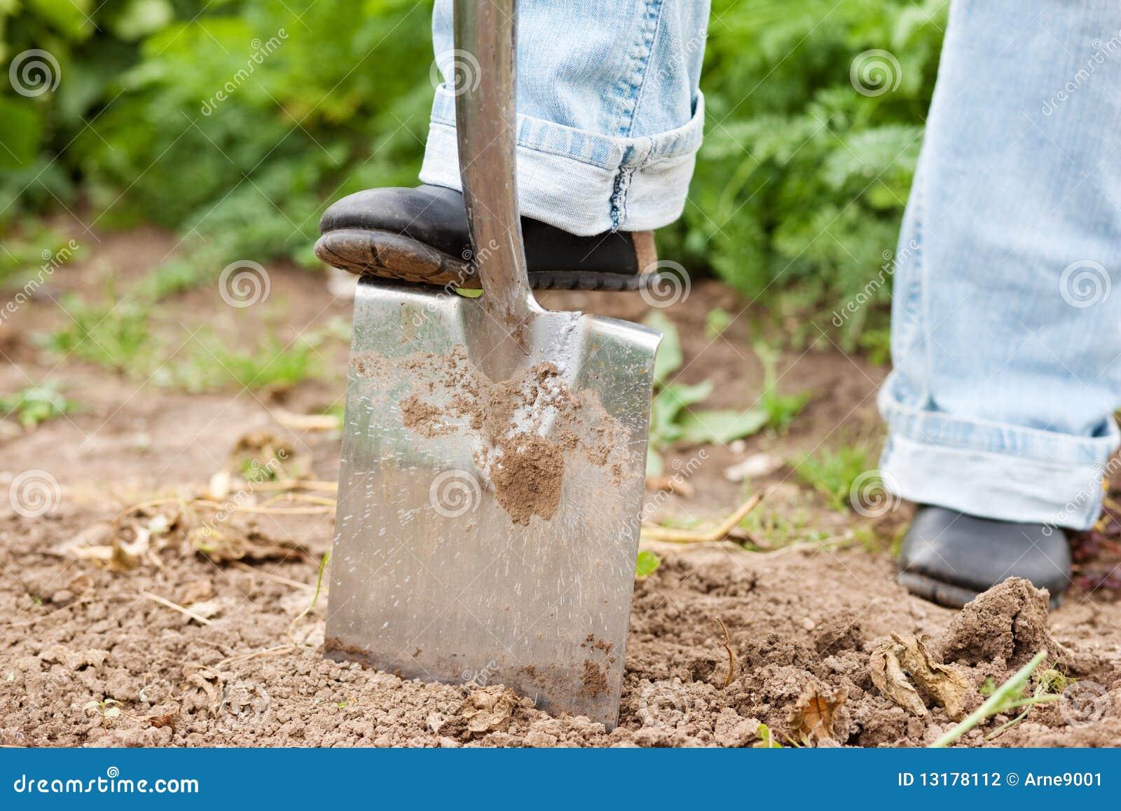 κηπουρική σκαψίματος πέρ&alph