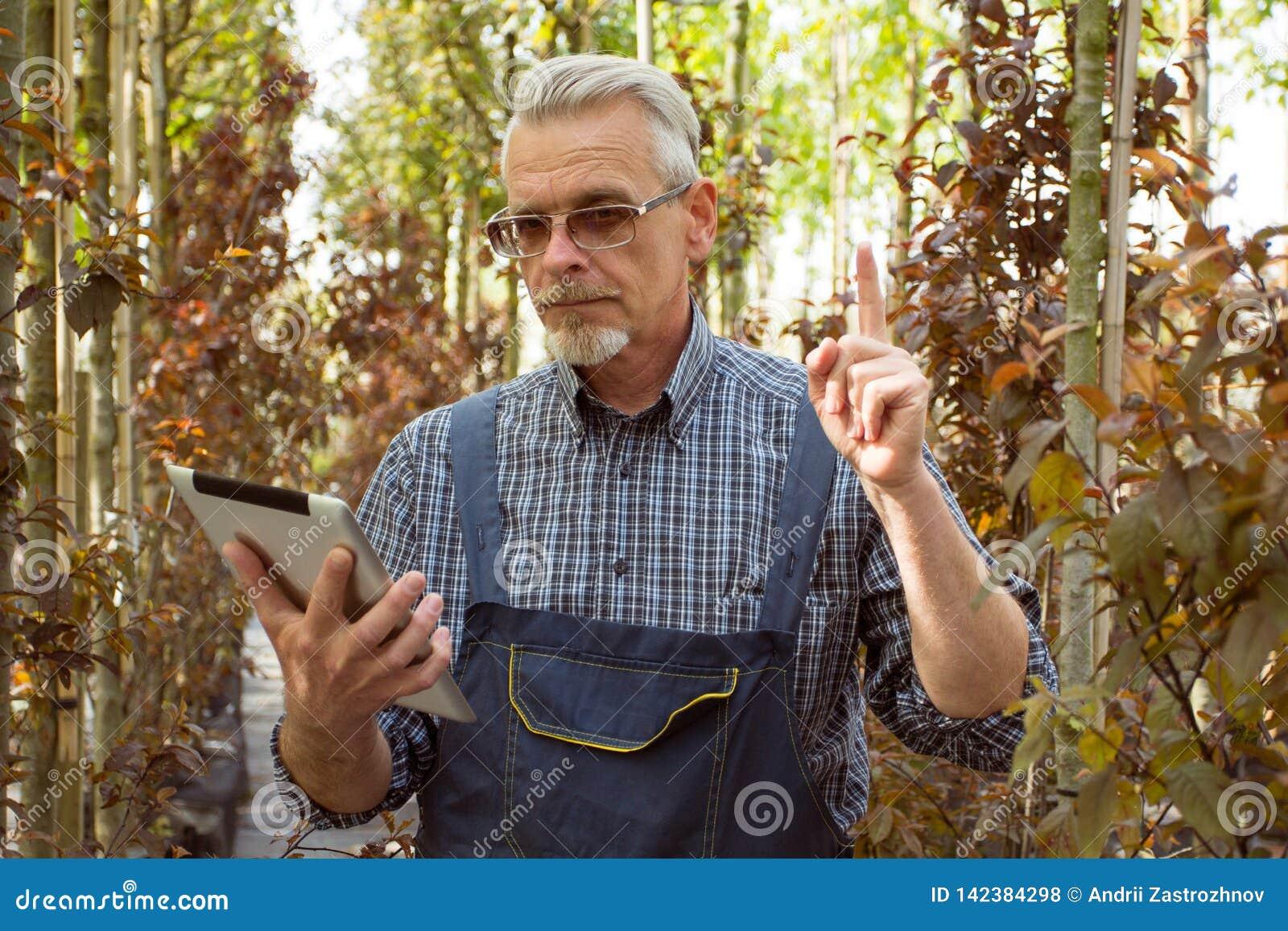 Κηπουρός με μια περιοχή αποκομμάτων στα χέρια του Γενετικά τροποποιημένα φυτά