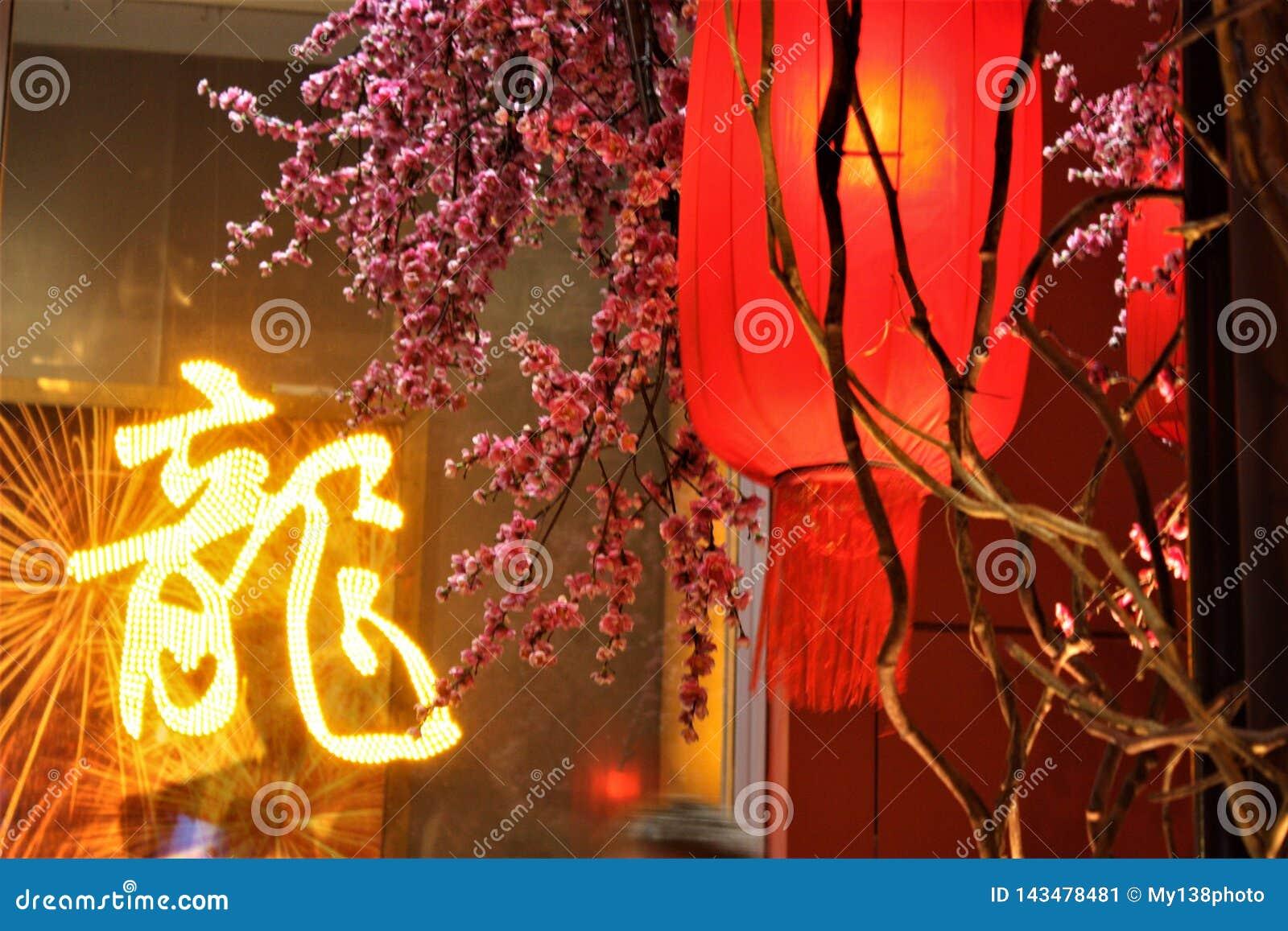 Κινεζικό νέο κόκκινο φανάρι έτους με το άνθος δαμάσκηνων στη λεωφόρο αγορών