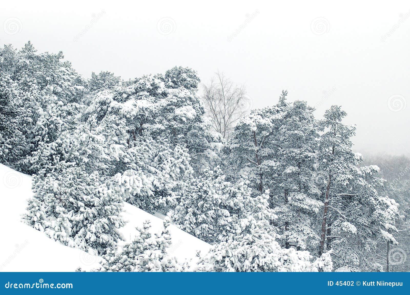 κλίση χιονώδης