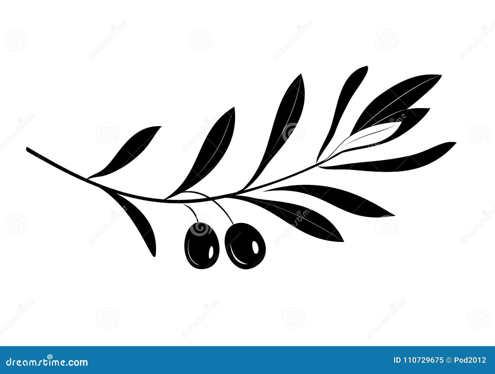 Κλαδί ελιάς με τη σκιαγραφία φύλλων και ελιών