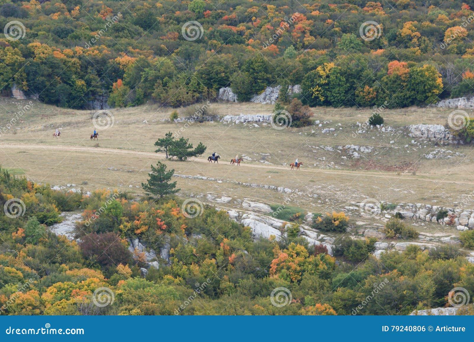 Κοιλάδα το φθινόπωρο με το τρέξιμο αλόγων