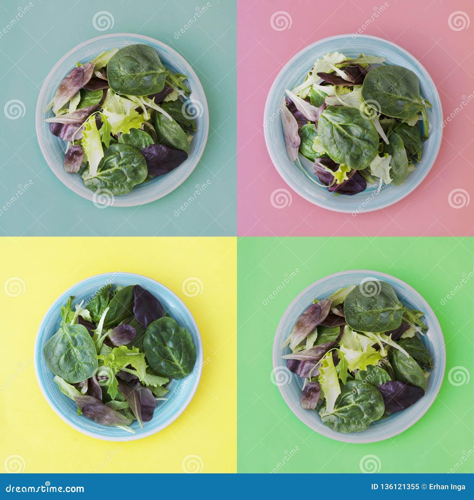 Κολάζ της φρέσκιας μικτής πράσινης σαλάτας στο στρογγυλό πιάτο, ζωηρόχρωμο υπόβαθρο Υγιή τρόφιμα, έννοια διατροφής Τοπ άποψη, τετ