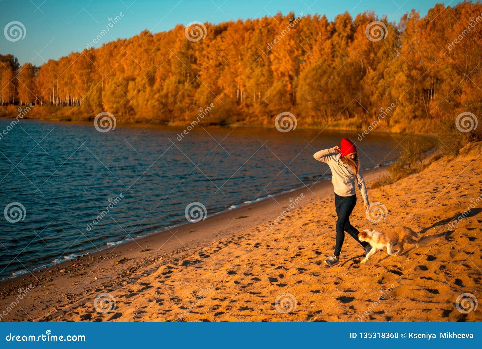 Κορίτσι με το σκυλί κόλλεϊ συνόρων στην παραλία στην παραλία κίτρινο δάσος φθινοπώρου στο υπόβαθρο